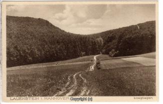 2720A-Lauenstein258-Panorama-Stieghagen-Scan-Vorderseite.jpg