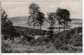 2770A-Lauenstein317-Panorama-Wald-Scan-Vorderseite.jpg