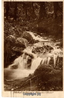 1080A-Suentel079-Blutbachtal-1930-Scan-Vorderseite.jpg