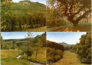 1540A-Suentel072-Hohenstein-Muldtibilder-Scan-Vorderseite.jpg