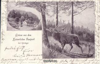 0320A-Holzmuehle194-Multibilder-mit-Hirsch-1900-Scan-Vorderseite.jpg
