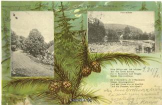 0350A-Holzmuehle139-Multibilder-USA-1901-Scan-Vorderseite.jpg