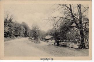 0550A-Holzmuehle294-Strassenansicht-1917-Scan-Vorderseite.jpg