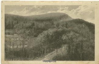 0920A-Holzmuehle251-Panorama-1925-Scan-Vorderseite.jpg