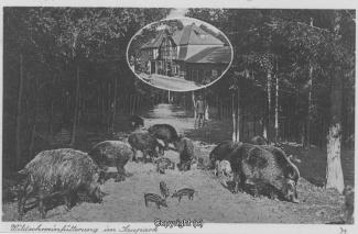 1250A-Holzmuehle064-Wildschweinfuetterung-Scan-Vorderseite.jpg
