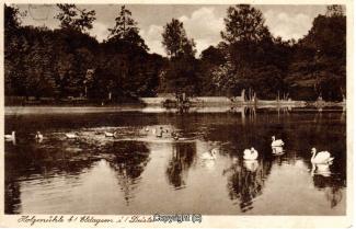 2020A-Holzmuehle269-Teichpanorama-1908-Scan-Vorderseite.jpg
