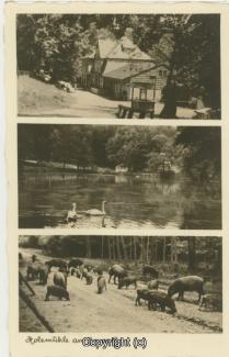 2620A-Holzmuehle192-Multibilder-1937-Scan-Vorderseite.jpg
