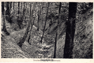 6010A-Holzmuehle289-Drachenschlucht-1940-Scan-Vorderseite.jpg