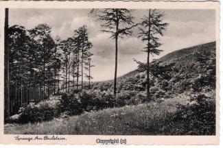 7650A-Springe409-Bielstein-1941-Scan-Vorderseite.jpg