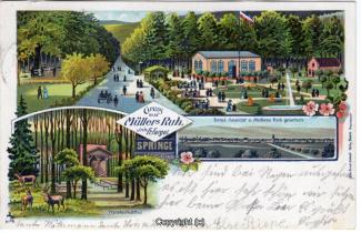 7850A-Springe410-Multibilder-Deistergarten-Litho-1903-Scan-Vorderseite.jpg