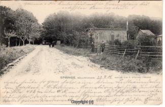 7860A-Springe412-Deistergarten-1906-Scan-Vorderseite.jpg