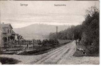 7880A-Springe414-Sophienhoehe-1910-Scan-Vorderseite.jpg