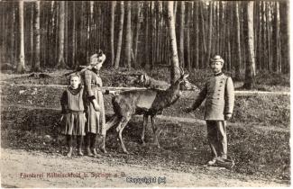 8020A-Springe426-Coellnischfeld-Reh-Foerster-1911-Scan-Vorderseite.jpg