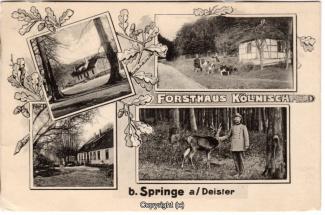 8025A-Springe435-Multibilder-Coellnischfeld-1915-Scan-Vorderseite.jpg