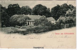 8050A-Springe425-Coellnischfeld-1899-Scan-Vorderseite.jpg