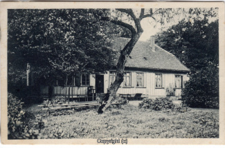 8080A-Springe444-Coellnischfeld-1907-Scan-Vorderseite.jpg