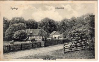 8090A-Springe430-Coellnischfeld-1903-Scan-Vorderseite.jpg