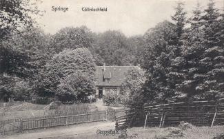 8140A-Springe245-Koellnischfeld-Scan-Vorderseite.jpg