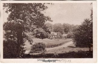 8220A-Springe437-Coellnischfeld-1919-Scan-Vorderseite.jpg