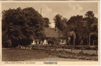 8240A-Springe429-Coellnischfeld-1929-Scan-Vorderseite.jpg
