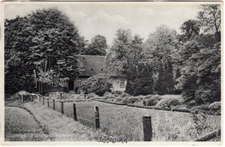 8260A-Springe439-Coellnischfeld-Scan-Vorderseite.jpg