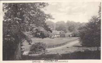 8330A-Springe244-Koennischfeld-1928-Scan-Vorderseite.jpg