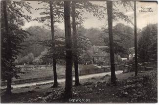8710A-Springe448-Coellnischfeld-1912-Scan-Vorderseite.jpg