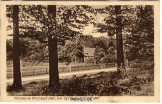 8720A-Springe449-Coellnischfeld-1925-Scan-Vorderseite.jpg