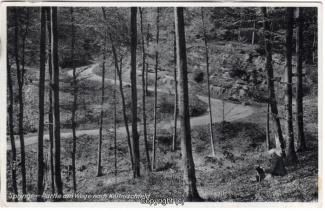8740A-Springe451-Coellnischfeld-Weg-nach-1940-Scan-Vorderseite.jpg