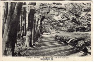8750A-Springe452-Coellnischfeld-Weg-nach-1939-Scan-Vorderseite.jpg