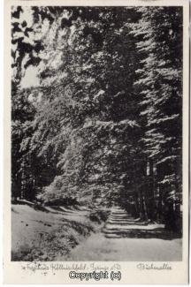 8760A-Springe453-Coellnischfeld-Weg-nach-1936-Scan-Vorderseite.jpg