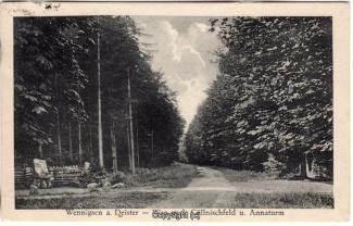 8770A-Springe454-Coellnischfeld-Weg-nach-1928-Scan-Vorderseite.jpg