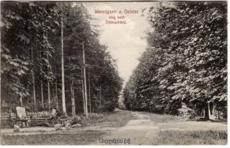 8780A-Springe455-Coellnischfeld-Weg-nach-1913-Scan-Vorderseite.jpg