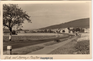 6360A-Springe330-Ort-Panorama-Scan-Vorderseite.jpg