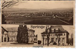 6530A-Springe310-Multibilder-Ort-Scan-Vorderseite.jpg