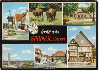 6730A-Springe494-Multibilder-Ort-Scan-Vorderseite.jpg