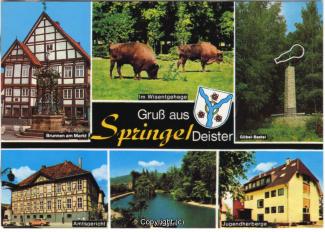 6795A-Springe507-Multibilder-Ort-Scan-Vorderseite.jpg