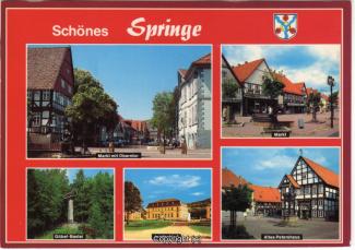6810A-Springe510-Multibilder-Ort-Scan-Vorderseite.jpg