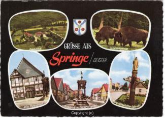 6815A-Springe511-Multibilder-Ort-Scan-Vorderseite.jpg