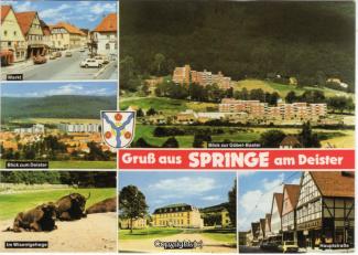 6825A-Springe513-Multibilder-Ort-Scan-Vorderseite.jpg
