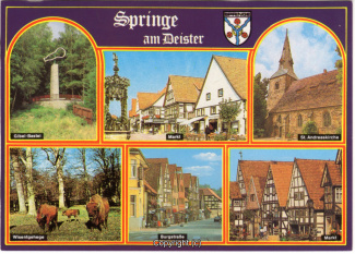 6830A-Springe514-Multibilder-Ort-Scan-Vorderseite.jpg
