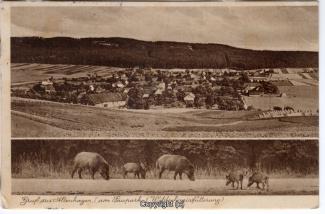0250A-Altenhagen015-Multibilder-Panorama-1937-Scan-Vorderseite.jpg