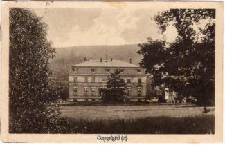 0410A-Saupark238-Schloss-1927-Scan-Vorderseite.jpg
