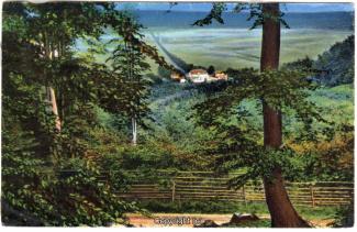 0740A-Saupark191-Schloss-Panorama-1924-Scan-Vorderseite.jpg