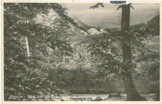 0750A-Saupark144-Jagdschloss-Blick-192x-Scan-Vorderseite.jpg