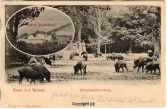0810A-Saupark219-Multibilder-Schloss-Wildschweine-1901-Scan-Vorderseite.jpg