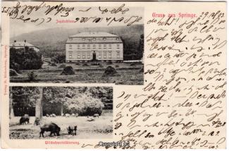 0820A-Saupark221-Multibilder-Schloss-Wildschweine-1903-Scan-Vorderseite.jpg