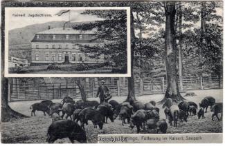 0850A-Saupark225-Multibilder-Schloss-Wildschweine-1911-Scan-Vorderseite.jpg