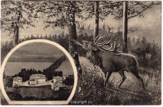 0890A-Saupark227-Multibilder-Schloss-Hirsch-1931-Scan-Vorderseite.jpg