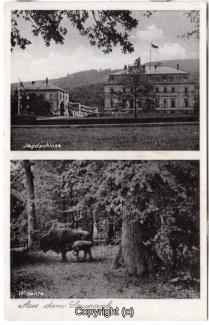 0950A-Saupark235-Multibilder-Schloss-Wisente-Scan-Vorderseite.jpg